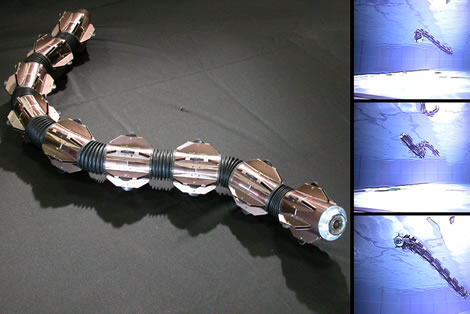 Amphibious Robot Snake